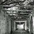 Alamo Corridor by Debbie Karnes