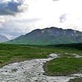 Alaska Denali National Park Landscape 1 by Douglas Barnett