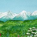 Alaska Splendor by Brenda Owen