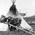 Alaska: Tepee, C1916 by Granger
