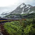 Alaska Train by Gary Wilson