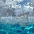 Alaskan Avalon by Betsy Knapp