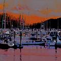Alaskan Harbor 8 by Chris Taggart
