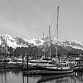 Alaskan Harbor by Ty Nichols