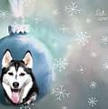 Alaskan Husky Let It Snow by Eleanor Abramson
