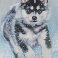alaskan Malamute pup in snow by Lee Ann Shepard