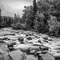 Alaskan Stream In Black And White by Paul Quinn
