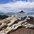 Alau Islet, Driftwood by Ron Dahlquist - Printscapes