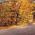 Albany Covered Bridge IIi by Brian Jannsen