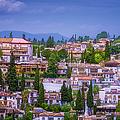 Albayzin View Granada by Joan Carroll