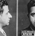 Albert Anastasia (1902-1957) by Granger