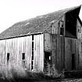 Albert City Barn 3 by Julie Hamilton
