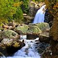 Alberta Falls by Bill Keiran
