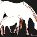 Albino Mare And Colt by Sadie Reneau