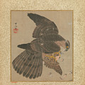 Album Of Hawks And Calligraphy by Eastern Accent