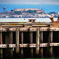Alcatraz Beyond The Pier by Doug Sturgess