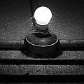 Alcatraz Bulb In Bw by Michiale Schneider