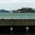 Alcatraz by George Arthur Lareau