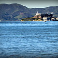 Alcatraz by Joy Patzner