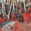 Alder Grove 3024 by Rob Owen