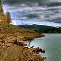 Alder Lake by David Patterson