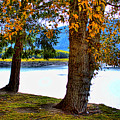 Alder Lake In The Fall by David Patterson
