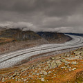 Aletsch Glacier  by Brenda Jacobs