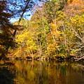 Alexandria Creek In The Fall by Sara  Raber