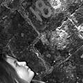 Alexia Curious by Frances Lewis
