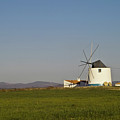 Algarve Windmill by Heiko Koehrer-Wagner