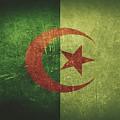 Algeria Distressed Flag Dehner by David Dehner