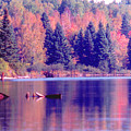 Algonquin Autumn by Ron Swonger