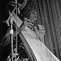 Alice Coltrane On Harp by Lee Santa