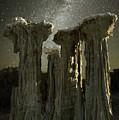 Alien Landscape by Surjanto Suradji