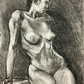 Alison Charcoal On Paper From Observation  by Sal Carreiro