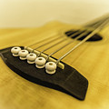 All About The Bass by Nick Bywater