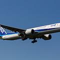 All Nippon Airways Boeing 777 by David Pyatt
