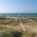 All Sand Path by Linda Kerkau