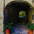 Alleyway by Gary Hopkins