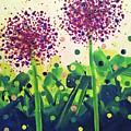 Allium Explosion by Jilian Cramb - AMothersFineArt