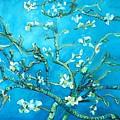 Almond Blossom by Eric  Schiabor