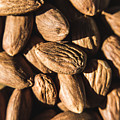 Almond Nuts by Jorgo Photography - Wall Art Gallery