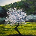 Almond Tree In Blossom by Lizzy Forrester