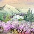 Almond Trees In Altea La Vieja by Miki De Goodaboom