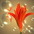 Almost A Blossom In Bubbles by Joyce Dickens