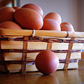 Almost All My Eggs In One Basket by Cricket Hackmann