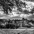 Alnwick Castle And Fallow Deer by Nigel Dudson