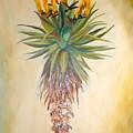 Aloe In The Sunlight by Sunel De Lange