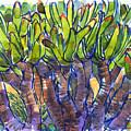 Fan Aloe by Judith Kunzle