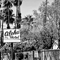 Aloha Hotel Bw Palm Springs by William Dey
